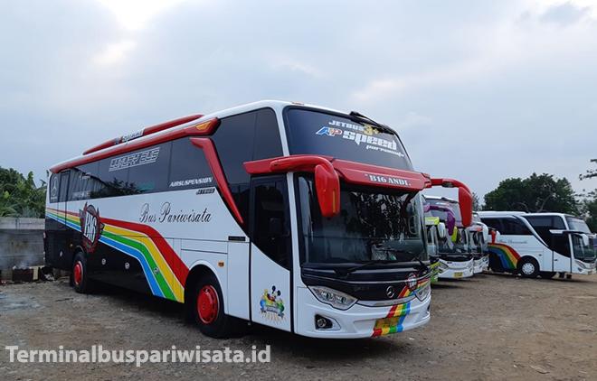 Sewa Big Bus 45-59 Seat